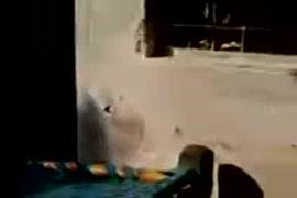 سكس مغربي في الدور المهجورة cenário 1